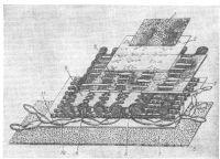Рис. 5. Схема строения насасывающих люков диафрагмальной брюшины в области сухожильного центра диафрагмы кролика