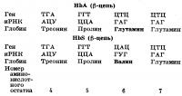 Схема образования серповидноклеточного гемоглобина (HbS) при замене единственного основания в генетическом коде