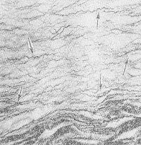 Рис. 6. Микропрепарат миокарда: выражено образование аргирофильных волокон (указаны стрелками) в зоне инфаркта; серебрение по Папу; X 200.