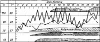 Рис. 1. Температурная кривая (боткинский тип), частота пульса (пунктирная линия) и сроки появления некоторых клинических симптомов у больного брюшным тифом.