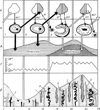 Рис. 1. Схема 28-дневного менструального цикла (стрелками показано взаимодействие гормонов гипофиза и яичника): А — циклические изменения и последовательность секреции гормонов гипофиза; незаштрихованное схематическое изображение гипофиза соответствует превосходящей секреции фолликулостимулирующего гормона (ФСГ), косая штриховка — секреции лютеинизирующего гормона (ЛГ), прямая штриховка — секреции лютеотропного гормона (ЛТГ, пролактина); Б — циклические изменения в яичнике; 1,2 — фаза созревания фолликула, 3,4 — овуляция и фаза желтого тела, а также начало созревания нового фолликула; В — циклические изменения выделения гормонов созревающим фолликулом и желтым телом; Г — двухфазная кривая базальной температуры: в фазу созревания фолликула она не превышает 37°, с момента овуляции и в фазу желтого тела базальная температура выше 37°; Д — циклические изменения в эндометрии соответственно двум фазам менструального цикла; 1 — железы (изменение их размера и секреции); 2 — вены; 3 — артерии (увеличение их длины и извитости); цифры внизу соответствуют дням менструального цикла.