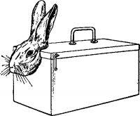 Рис. 8. Приспособление для фиксации кроликов.