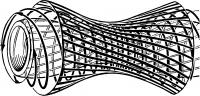 Рис. 4. Схема спирального хода (указан стрелками) волокон мышечной оболочки тонкой кишки.