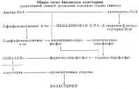 Общая схема биосинтеза холестерина