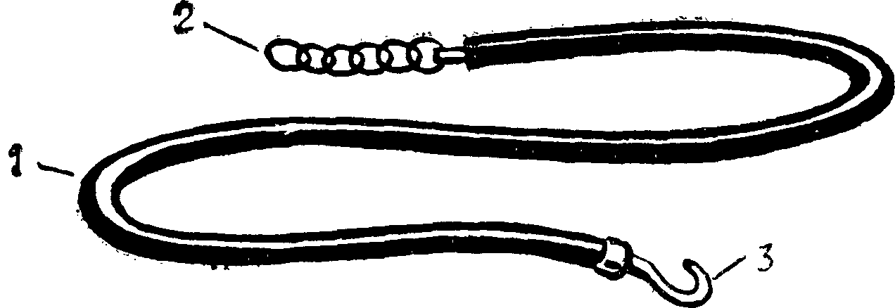 Рис. 1. Жгут Эсмарха: резиновая трубка (1) с металлической цепочкой (2) и крючком (3) на концах для закрепления наложенного жгута.